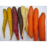 Karotten mix Bund