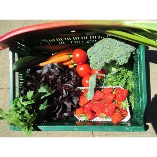 Regio Gemüse-Obstkiste  mittel