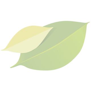 """Powerkiste """"Obst & Gemüse"""" mittel"""